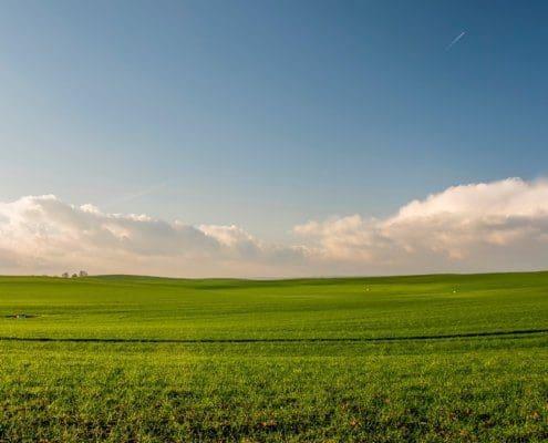Tipps wenn man ein Grundstück verkaufen möchte